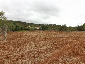 Terreno Rústico / Faro, Goldra