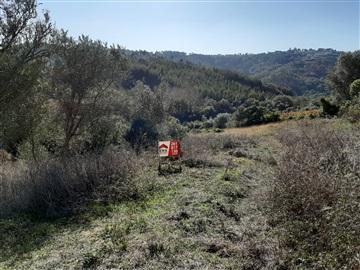 Terreno Rústico / Mafra, Sobral da Abelheira, Mafra