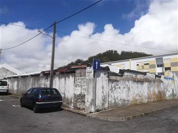 Terreno Rústico / Ponta Delgada, Rosto do Cão (São Roque)