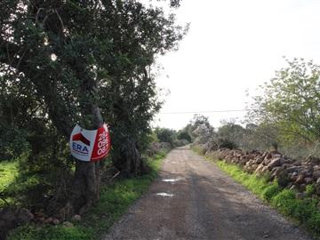 Terreno Rústico / Silves, São Bartolomeu de Messines