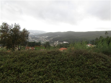 Terreno Rústico / Vale de Cambra, Macieira de Cambra